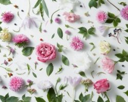 Где лучше оформить заказ цветов или букетов в России - каталог в My-present.ru