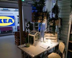 В «IKEA» информировали об открытии первого торгового ресурса внутри МКАД