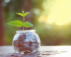 Как правильно выбирать эффективную программу для вкладов?