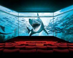 «ScreenX»: в Москве появится первый кинозал с инновационным форматом