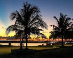 «Тропический остров»:  согласованы инвестиции в круглогодичный курорт рядом с «Домодедово»