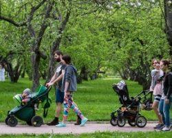 В столице уже доступен сервис аренды колясок