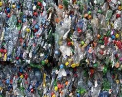 Раздельный мусор: столичные власти назвали цвета контейнеров