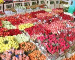 Цветы оптом с доставкой: преимущества и особенности сотрудничества