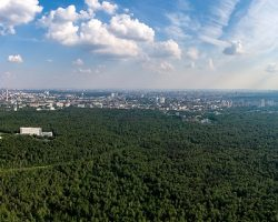 Московская область: назван лучший парк