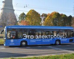 Столица увеличит количество сервисных электробусов