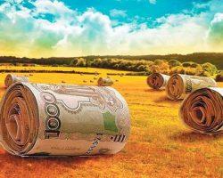 Инвесторы активно вкладывают в сельскохозяйственное  развитие Подмосковья