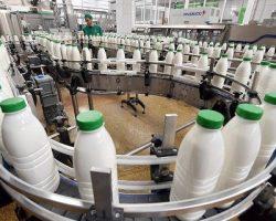 Молочное производство Подмосковья показывает рост