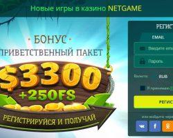 Авторитетом у профессиональных игроков пользуется онлайн казино НетГейм
