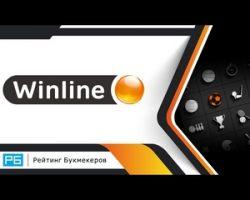 Ставки на спорт в букмекерской конторе Winline: беттинг в БК Винлайн