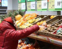 Подмосковные власти подтвердили отсутствие дефицита продуктов
