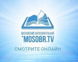 Онлайн-спектакли и лекции уже проводятся для школьников