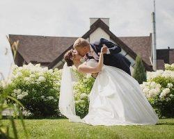 Бракосочетание на необычных площадках: услугой воспользовались уже более 1 тысячи пар