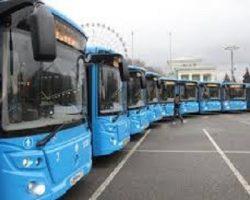 Столичные коммерческие автобусы набирают популярность