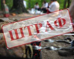 В МО штрафуют за нарушение карантина гуляющих в лесу