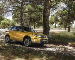 Столичные дилеры «Suzuki» сообщили о старте полноценной работы