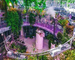 «Флорариум», «Ледяная пещера» и «Подземный музей» уже функционируют в «Зарядье»