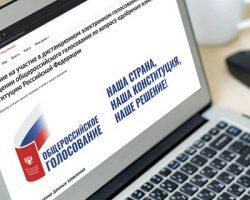 Онлайн-голосование по Конституции: москвичи подают заявки
