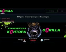 Букмекерская контора Горилла — скачать бк горилла без проблем