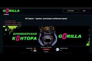 продвинутая букмекерская контора gorilla