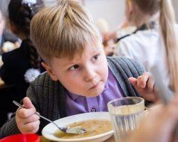Бесплатное питание школьников: власти МО выделят 2.5 миллиарда