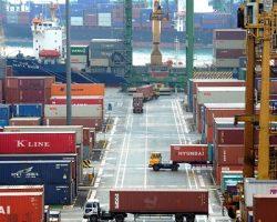 Торговый экспорт подмосковной продукции АПК увеличен на 40%