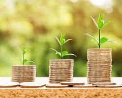 «Венчурный фонд НТИ» инвестирует средства в «Цельс»