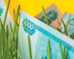 В МО увеличат инвестиции в АПК в 1.5 раза