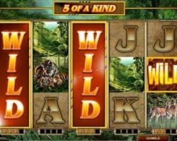 Для чего азартным слотам «дикий» символ?