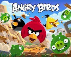 Компания-собственник прав на «Angry Birds» подала иск к «Wildberries»