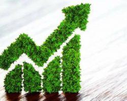 «Зеленые» облигации: столичные власти нацелены подготовить дополнительные выпуски