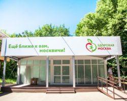 «Здоровая Москва»: павильон в парке «Измайловский» стал самым популярным у жителей столицы