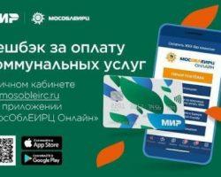 Онлайн-оплата ЖКУ в Подмосковье: объем кэшбека увеличился в 4 раза
